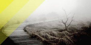 4 suggerimenti per gestire la luce naturale in fotografia